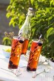 黑莓柠檬在庭院里冰了茶 免版税库存图片