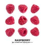 莓汇集 在与裁减路线的白色背景隔绝的莓 无缝的模式 图库摄影