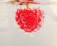 莓泡影 免版税库存图片