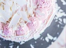 莓白色巧克力蛋糕 免版税图库摄影