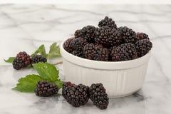 黑莓白色碗 图库摄影