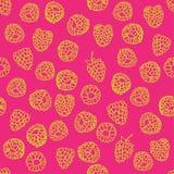 莓的无缝的样式 免版税库存图片