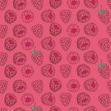 莓的无缝的样式 免版税库存照片