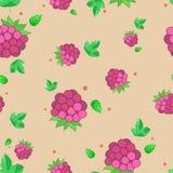 莓的样式 库存图片