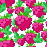 莓的样式 库存照片
