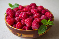 莓盘v 库存图片
