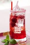 莓碳酸钠 库存照片