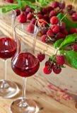 莓糖浆和莓果 库存照片