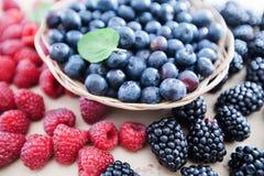 莓蓝莓果子新鲜抗氧剂食物 库存图片