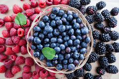 莓蓝莓果子新鲜抗氧剂食物 免版税图库摄影