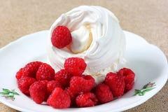 莓蛋白甜饼 库存照片