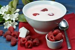莓酸奶 免版税库存照片