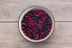 莓,蓝莓,在一个圆的碗的黑莓 库存照片