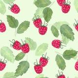 莓 无缝的模式 画开花的河结构树水彩绕的银行 免版税库存照片