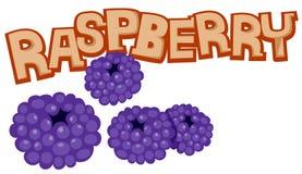 莓 向量例证