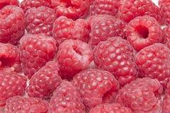 莓 库存图片