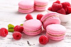 莓macarons 免版税库存照片