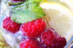 莓mojito用柠檬和薄菏 图库摄影
