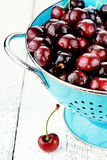 莫利洛黑樱桃 库存图片