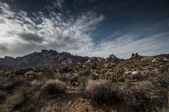 莫哈韦沙漠全国蜜饯花岗岩山 免版税库存照片