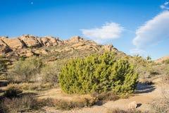 莫哈维沙漠圣塔克拉里塔加利福尼亚 图库摄影