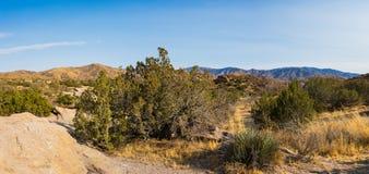 莫哈维沙漠自然保护区 免版税库存照片