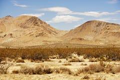莫哈维沙漠风景 免版税库存图片