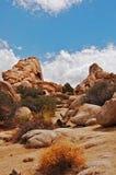 莫哈维沙漠 免版税库存图片