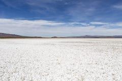 莫哈维沙漠Salt平的干盐湖 免版税库存照片