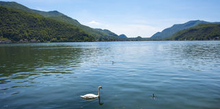 莫尔科特-卢加诺湖,卢加诺,提契诺州,瑞士,欧洲 库存图片