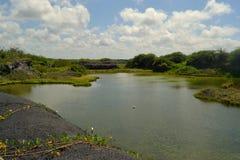 莫尔诺点,海岛伊莎贝拉岛,加拉帕戈斯,厄瓜多尔 库存照片