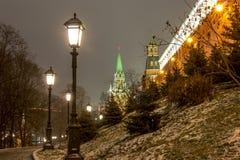 莫斯科、克里姆林宫和亚历山大视域从事园艺, 图库摄影