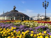 莫斯科公园 免版税库存照片