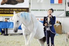 莫斯科国际骑马陈列妇女骑师和白马 在展示期间 免版税库存照片