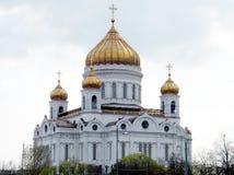 莫斯科基督大教堂救主2011年 免版税库存图片