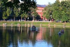 莫斯科池塘 莫斯科 免版税库存照片