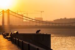 莫斯科河俄国烟雾 星期四, 11月 20日2014年 天气:太阳, s 免版税库存图片