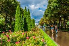 莫斯科高尔基公园胡同在夏天雨以后的 免版税库存图片