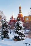 莫斯科,俄罗斯- 2018年2月01日:克里姆林宫塔积雪的树背景的 从Alexandrovsky庭院的看法 库存图片