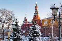 莫斯科,俄罗斯- 2018年2月01日:克里姆林宫塔积雪的树背景的 从Alexandrovsky庭院的看法 免版税库存照片