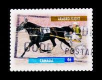 莫斯科,俄罗斯- 2017年11月24日:在加拿大打印的邮票嘘 免版税图库摄影