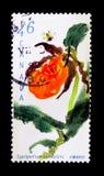 莫斯科,俄罗斯- 2017年11月24日:在加拿大打印的邮票嘘 图库摄影