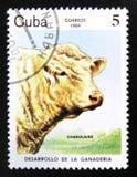 莫斯科,俄罗斯- 2017年7月15日:在古巴sho打印的岗位邮票 免版税图库摄影