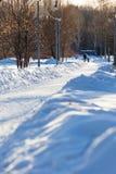 莫斯科,俄罗斯- 2018年3月20日:妇女走与太阳光芒照亮的一个积雪的公园胡同的一个小孩子 库存照片