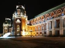 莫斯科,俄罗斯- 2018年12月17日:盛大宫殿在Tsaritsyno公园在有圣诞灯装饰的莫斯科在冬天晚上 库存图片