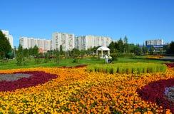 莫斯科,俄罗斯- 9月01 2016年 大花床在Zelenograd在莫斯科,俄罗斯 免版税图库摄影