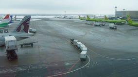 莫斯科,俄罗斯2016年12月12日:不同的航空公司航空器在多莫杰多沃机场得到服务 影视素材