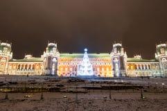 莫斯科,俄罗斯1月06日:Tsaritsyno博物馆夜全景在圣诞节时间 免版税库存照片