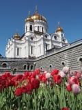 莫斯科 基督・莫斯科救主寺庙 免版税图库摄影