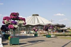 莫斯科,新的马戏 免版税库存图片
